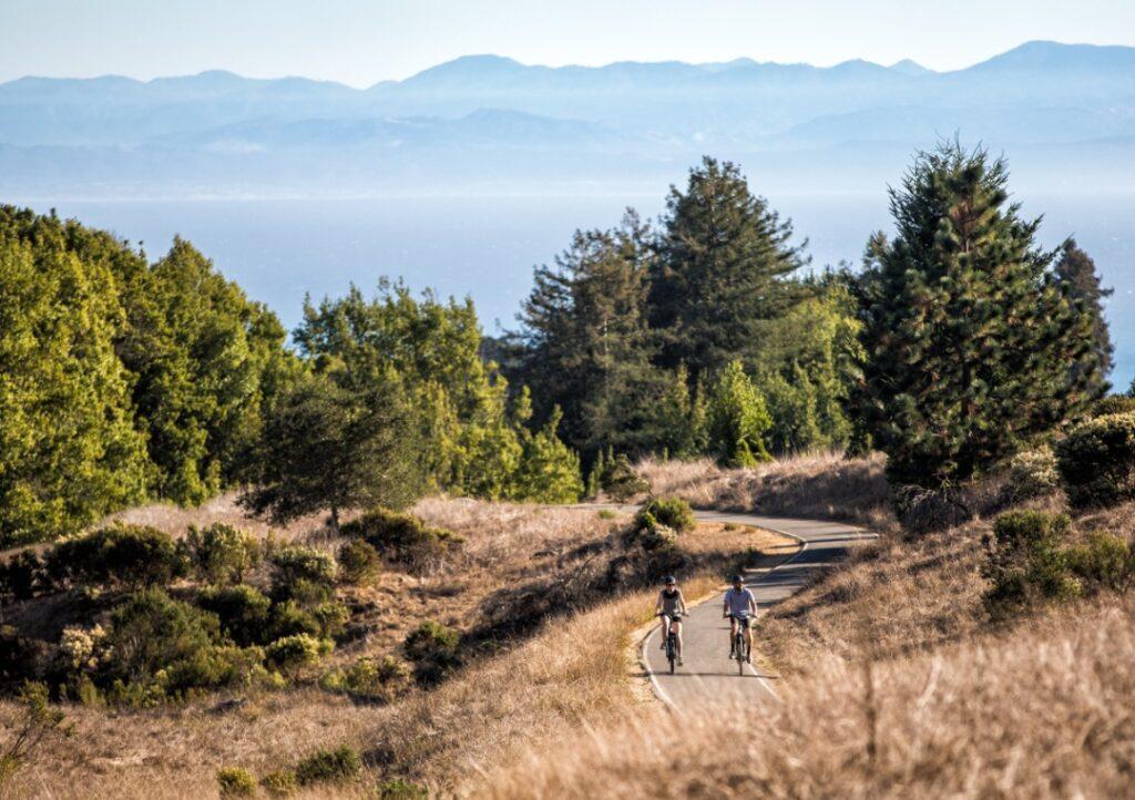 To mennesker på cykler i et landskab