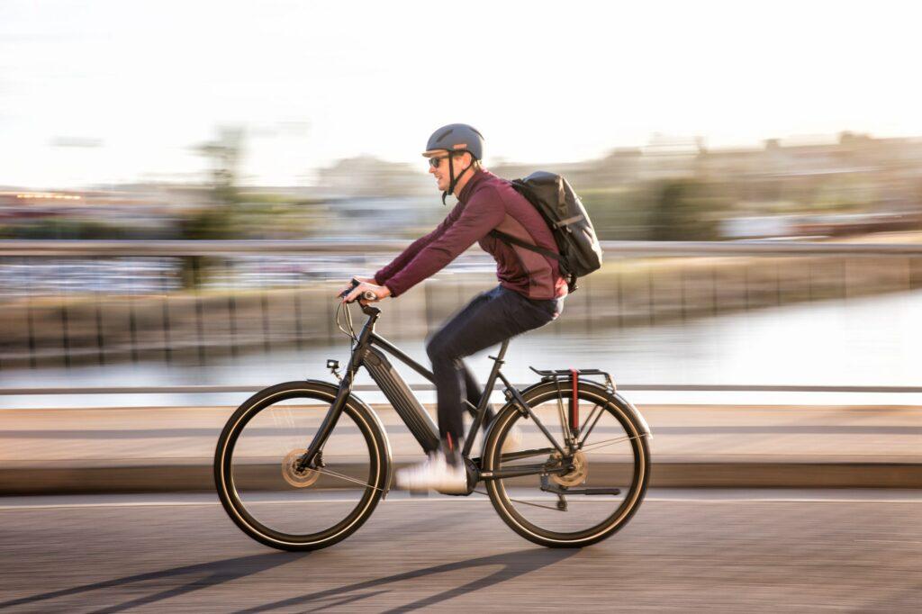 Gazelle e-bike   london bike tours