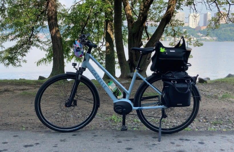 Ebike in front of trees | Gazelle Medeo T9