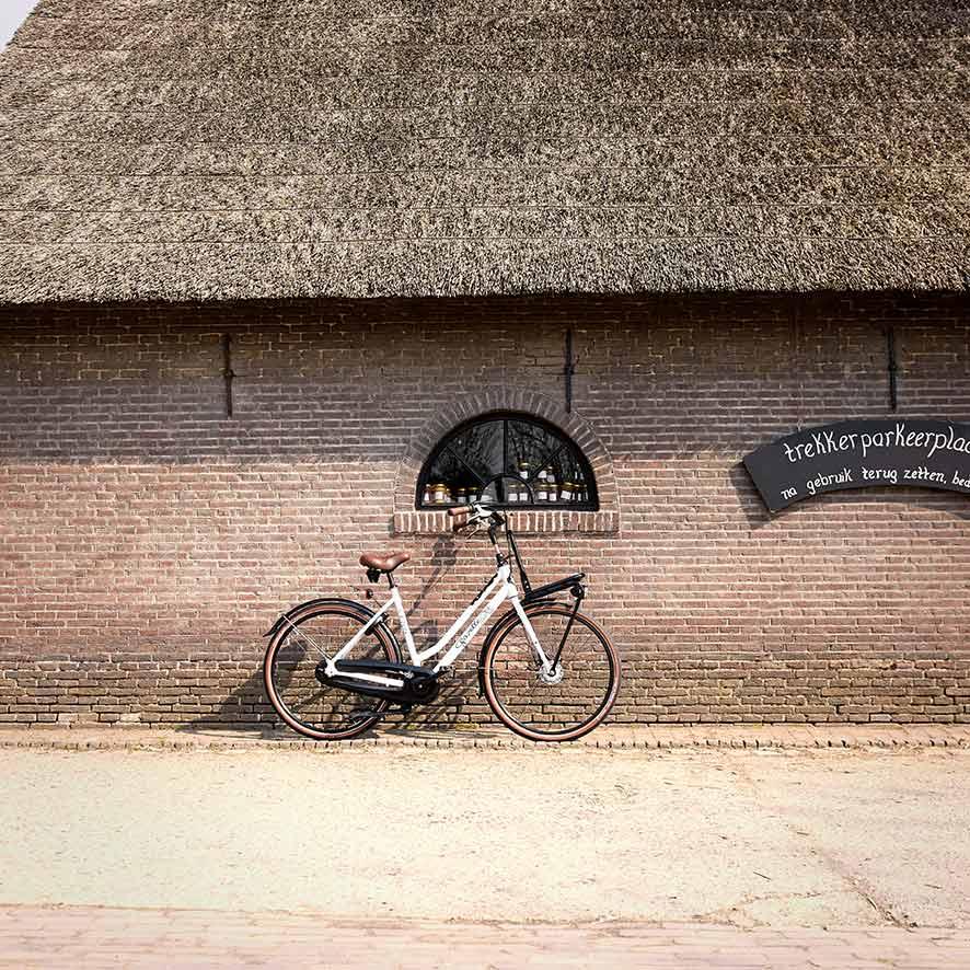 Mit Freundinnen in den Park? Oder mit dem Freund essen gehen? Das Lastenrad für Damen ist robust und elegant.
